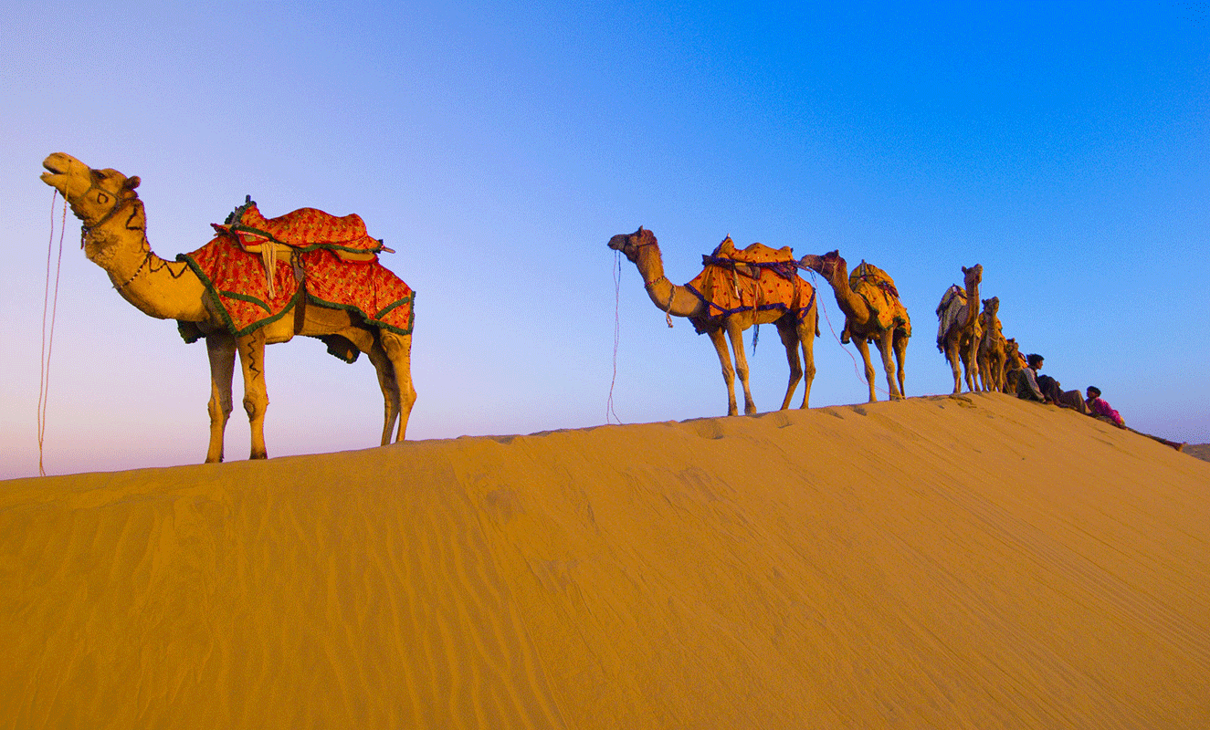 rajasthan_tours_in_india