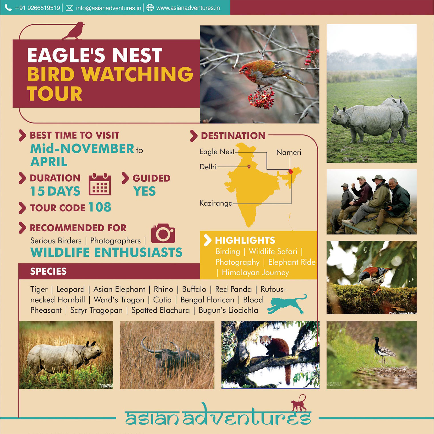 eagle_nest_bird_watching_tours